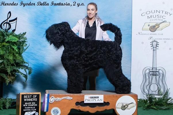 Herodes Fyodor Bella Fantasia, 23 months