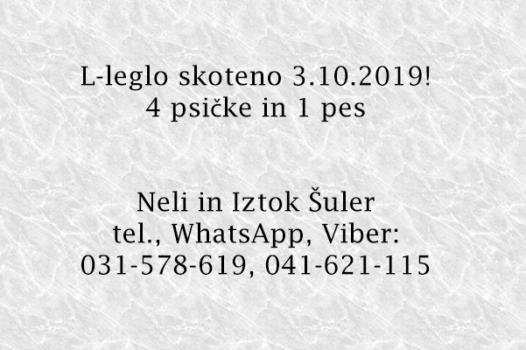 kleglo_wText