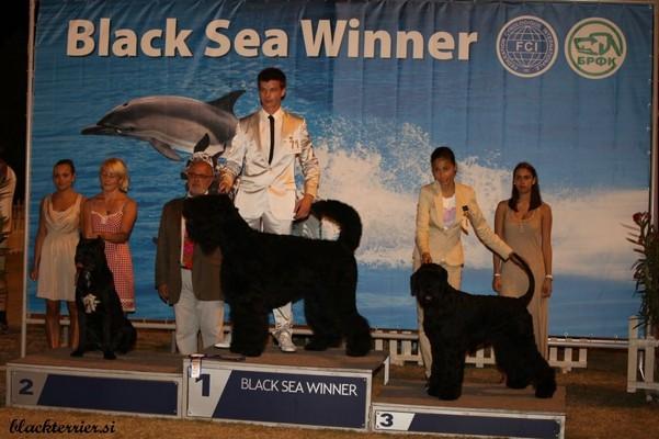 Barin Bisernio Bella Fantasia BLACK SEE WINNER
