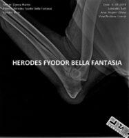 Herodes FYODOR Bella Fantasia HD ED (2)