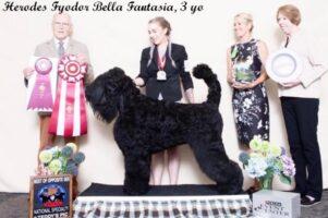 Herodes Fyodor Bella Fantasia 3 years (1)