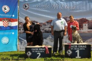 kira in junior handler Allessia (2)