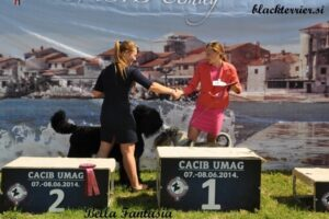 kira in junior handler Allessia (3)