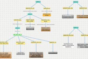 Barve kozuhov shema splet SLO