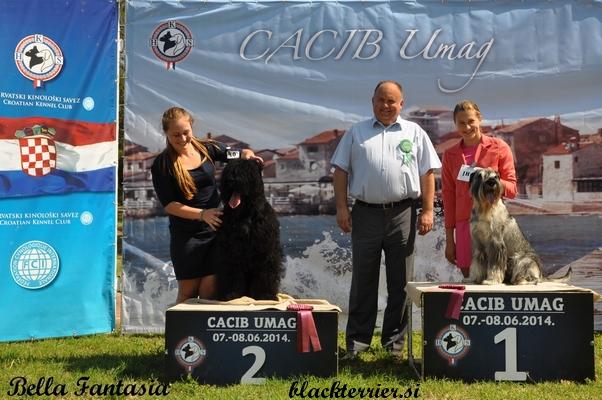 kira in junior handler Allessia (2)