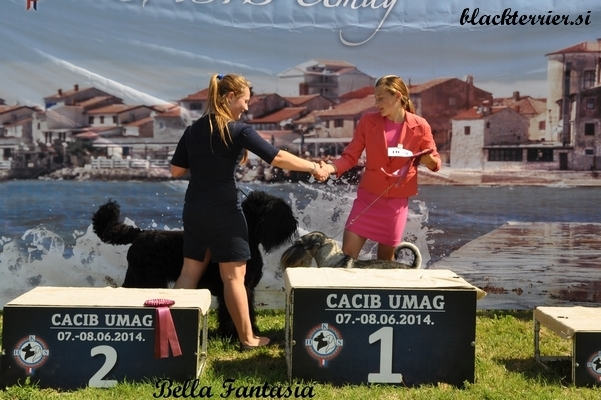 kira in junior handler Allessia (3)